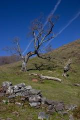 ItsusikoHarria-24 (enekobidegain) Tags: mountains montagne monte euskalherria basquecountry pyrnes pirineos mendia paysbasque nafarroa pirineoak bidarrai itsasu itsusikoharria