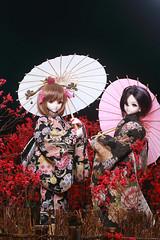 YUKIHO*MAKOTO (Lucky_E) Tags: doll kimono dd volks ims dds dollfiedream idolmaster
