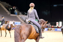 IMG_0702 (dreiwn) Tags: horse germany stuttgart grand prix pony german horseshow pferde pferd equestrian horseback reiten dressage 2015 reitturnier dressur pferdekopf dressuur junioren ridingarena pferdesport germanmasters doublebridle reitplatz reitverein dressurreiten dressurpferd kandare turnierreiten dressurprfung grandprixspecial