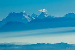 Nebelmeer 3 (rgr_944) Tags: mist mountain alps berg rock fog alpes nebel outdoor natur alpen landschaft brouillard brume felsen nebelmeer canoneos60dcanoneos70d rgr944