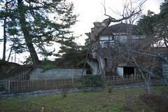 DSC03190.jpg (randy@katzenpost.de) Tags: winter japan matsushima miyagiken miyagigun japanurlaub20152016