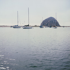 Morrow Rock (Colton Davie) Tags: summer 120 film water june sailboat boats iso100 boat fuji rockingchair reversal morrowbay 6x6cm 2013 rolleicordiii provia100fprofessional