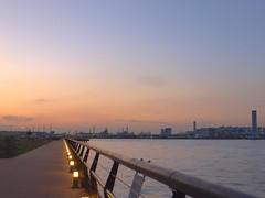 Chemical Plant at Sunset (elminium) Tags: sky japan evening harbor kanagawa kawasaki tokyobay chemicalplant dmcg1