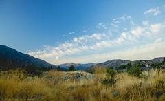 DRY GRASS (Jonhatan Photography) Tags: blue sky clouds canon explorer adventure valley