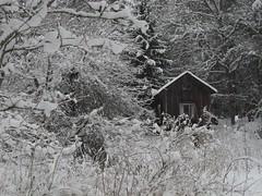 Canon g11 winter finlnd (tommikv) Tags: winter abandoned finland forgotten abandonedhouse talvi hyltty forgottenhouse