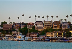 Corona Del Mar (joseph_linzy) Tags: california beach seaside newportbeach palmtrees oceanside coronadelmar
