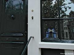 number eight (phacelias) Tags: city window amsterdam finestra stad raam citt
