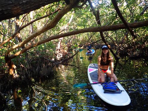 2_17_16 Kayak Paddleboard Tour Sarasota FL 10
