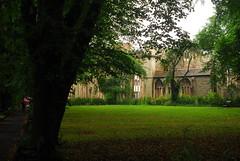 Temple Church, Bristol (Forest Pines) Tags: church bristol ruin redcliffe templechurch englishheritage knightstemplar knightshospitaller