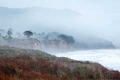 Winter Coastline (Kirk Lougheed) Tags: ocean california statepark sea sky usa mist water landscape coast unitedstates pacific outdoor shoreline pacificocean shore santacruzmountains aonuevo anonuevostatepark aonuevostatepark