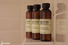 Verb Hotel (gigchick) Tags: boston bathroom hotel bottles massachusetts shampoo boutique showergel bolyston verb boutiquehotel verbhotel