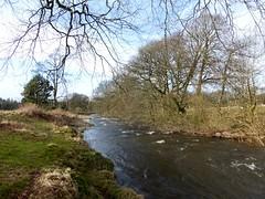 River Devon at Rumbling Bridge Gorge (luckypenguin) Tags: river scotland gorge kinross rumblingbridge kinrossshire riverdevon crookofdevon muckhart powmill