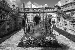 Vizcaya Inner Cactus Garden BW (Don Thoreby) Tags: cactus gardens stairs arch florida miami steps passages walkways walls mansion fountains archways coconutgrove biscaynebay cactusgarden miamiflorida villavizcaya gardensteps renaissancearchitecture vizcayamuseumandgardens gardenpathways villavizcaya1914 jamesdeeringmansion