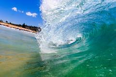 NBSurf_DY_2016_01_31_873.jpg (Neil Banek) Tags: surf sydney freshwater deewhy northernbeaches