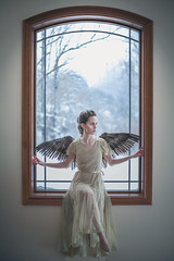 Pretty little bird, how the window taunts thee.  165/365 (aleah michele) Tags: winter sky ballet snow cold color bird birdcage window beautiful angel vintage dance trapped soft feminine flight dancer grace calm christian caged backlit 365 concept lovely elegant conceptual delicate graceful chill subtle windowlight angelwings churchwindow littlebird braidedhair vintagedress youngdancer spreadwings largewindow 365project conceptualportrait aleahmichele aleahmichelephotography