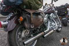 Harley's an der Fähre