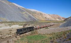 Vegetation on the moon? (david_gubler) Tags: chile train railway llanta potrerillos ferronor