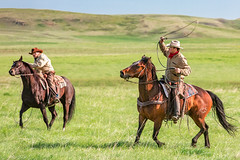 Marlboro Men No. 2 (www.toddklassy.com) Tags: ranch sky horses usa west green field grass horizontal cowboys rural landscape montana mt ride unitedstates cattle loop action horizon country hill meadow culture documentary rope riding pasture lloyd copyspace agriculture livestock equestrian horseback branding equine bucolic chasing ranching quarterhorse roping lasso oldwest wester herding ranchers blainecounty