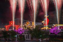 River Hongbao Fireworks 2016, The Float, Marina Bay (gintks) Tags: spectacular singapore fireworks singapur yearofthemonkey marinabay 2016 huat exploresingapore singaporetourismboard zodiacmonkey festiveseasons yoursingapore gintaygintks