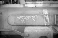 Batler '07 (Doris Taylor) Tags: 663k batler