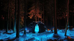 Winter ghost (palateth) Tags: wood winter portrait snow lightpainting night forest countryside belgium belgique belgie ghost ig lightart ihatefirtrees