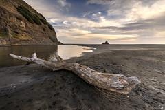 Karekare Beach 3 (photo_sven) Tags: auckland neuseeland karekare karekarebeach neuseelandreise2015