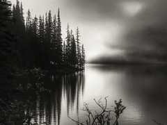 Coming Fog in Moraine Lake (Banff, Canada. Gustavo Thomas  2013) (Gustavo Thomas) Tags: morning travel trees blackandwhite naturaleza sunlight lake canada blancoynegro maana nature monochrome fog lago dawn agua day lac alberta banff neblina nuage madrugada waterscape morainelake blancetnoir monocromtico