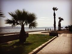 (zvjezda) Tags: sea sun mobile turkey deniz palmiye izmir karyaka sahil karsyaka