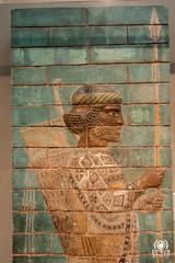 British Museum (andrea.prave) Tags: uk england london museum persian museu muse londres museo britishmuseum londra mesopotamia babilonia basrelief inghilterra  mze    bassorilievo periani bajorrelieve    babilon