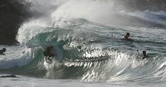 IMG_7130 (supercrans100) Tags: big waves surfing skimboarding wedge bodyboarding the bodysurfing