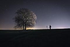 En En la oscuridad ...(un rayo de luz) (Dani Cheto) Tags: tree night canon stars arbol noche spain darkness solo estrellas marzo ilumination lleida oscuridad iluminar 2016 arvol algaire cogorzon