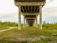 Under The bridge (R. Sawdon Photography) Tags: bridge concrete vanishingpoint pillar shapes mapleridge goldenearsbridge
