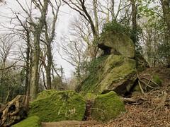 Knowle Rocks Lowest Outcrop (side view) (Bridgemarker Tim) Tags: stacks knowle devonwoods eastdartmoorlesserknowntors