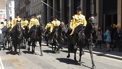 band of the household cavalry-freedom of the city of london parade /20/04/2016/ (philipbisset275) Tags: unitedkingdom cityoflondon centrallondon englandgreatbritain householdcavalrymountedregiment bandofthehouseholdcavalry 20042016 freedomofthecityoflondonparade