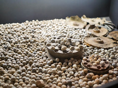 Flanders fields museum (s/n/k) Tags: grenade shrapnel 2016ypresieper