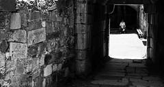 DSC_0822.jpg (cptscarlett78) Tags: blackandwhite nikon town scarlett sea castle nikon castle tom greece knights harbour aegean d7100 d7100 dodecanese kos kos neratzia