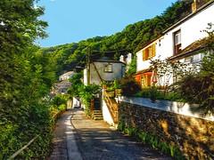 Landaviddy Lane (anshanjohn) Tags: walking cornwall polperro summer2012