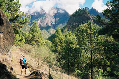 (Carla Andrea Tamara Tonesi) Tags: summer mountains film 35mm la nikon hiking f80 palma calderadetaburiente 2015 filmisalive