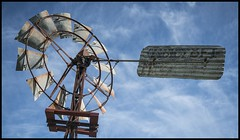 Windmill may help for Global Warming= (Sheba_Also) Tags: windmill for may help warming global