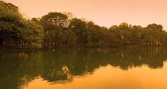 Le Lac Hoan Kiiem a Hanoi  Nord Vietnam (buch.daniele) Tags: lake yellow jaune landscape eau lac vietnam reflets hano