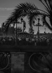 Sevilla es pasin (Elizabeth Padilla) Tags: travel viaje blackandwhite espaa blancoynegro contraluz sevilla andaluca spain pentax semanasanta tradicin hollyweek pentaxk5