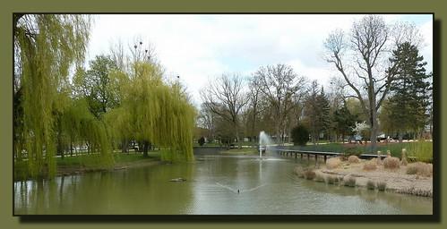 L'étang du Parc Jacquinot