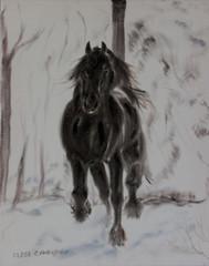Friese im Winter (kunstgrafik) Tags: schnee winter kunst jahreszeit landschaft weiss pferd schwarz samt tier friese lgemlde luethi zeitgenssisch abdelghafar