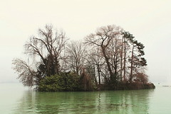 Annecy, France (Ondine B.) Tags: lake france flores flower annecy primavera fleur alpes lago spring frankreich europe cloudy flor lac frana alpen savoie printemps papoula lakeannecy alpesfranaises
