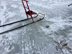 2016 Trip to Sweden - Ice Fishing (Mrs. Gemstone) Tags: trip ice fishing sweden visit perch icefishing kicksled
