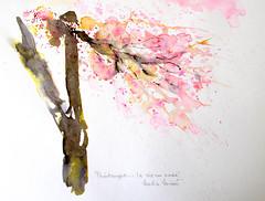 Watercolour art:...printemps 'la vie en rose...' (Nadia Minic) Tags: pink flowers en tree art nature rose watercolor la spring blossom song joy dream atmosphere explore luxembourg vie inkandwatercolour nadiaminic artistnadiaminic