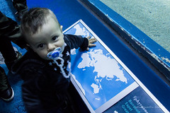 valencia 2016-123 (hiroke636) Tags: valencia mar peces oceano oceanografic
