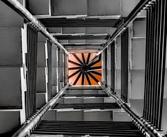 Stairwell (holyfnger ( Today mostly running after Lara Crof) Tags: blackandwhite orange abstract blancoynegro stairs germany arquitectura europe stairwell karlsruhe naranja escaleras arquitecture badenwrttemberg selectedcolor badenwuerttemberg huecodelaescalera badischeslandesmuseum elhuecodelaescalera