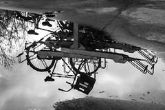 Inge Hoogendoorn (ingehoogendoorn) Tags: blackandwhite reflection monochrome utrecht upsidedown zwartwit monochromatic blacknwhite fietsen fiets catharijnesingel fietsenstalling reflectie spiegeling monochroom ondersteboven dutchbikes