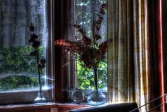 9h57 (urban requiem) Tags: old urban window fleurs lost belgium belgique belgie decay bleu cobweb exploration maison derelict fentre ons hdr vases abandonned rveil verlassen urbex abandonn verlaten toiledaraigne 600d loiseau nestje onsnestje maisonloiseaubleu